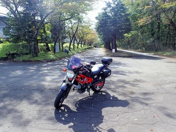 s-PA080018.jpg